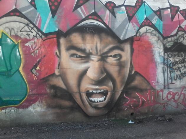 Muro de la calle Tomás Basañez VII