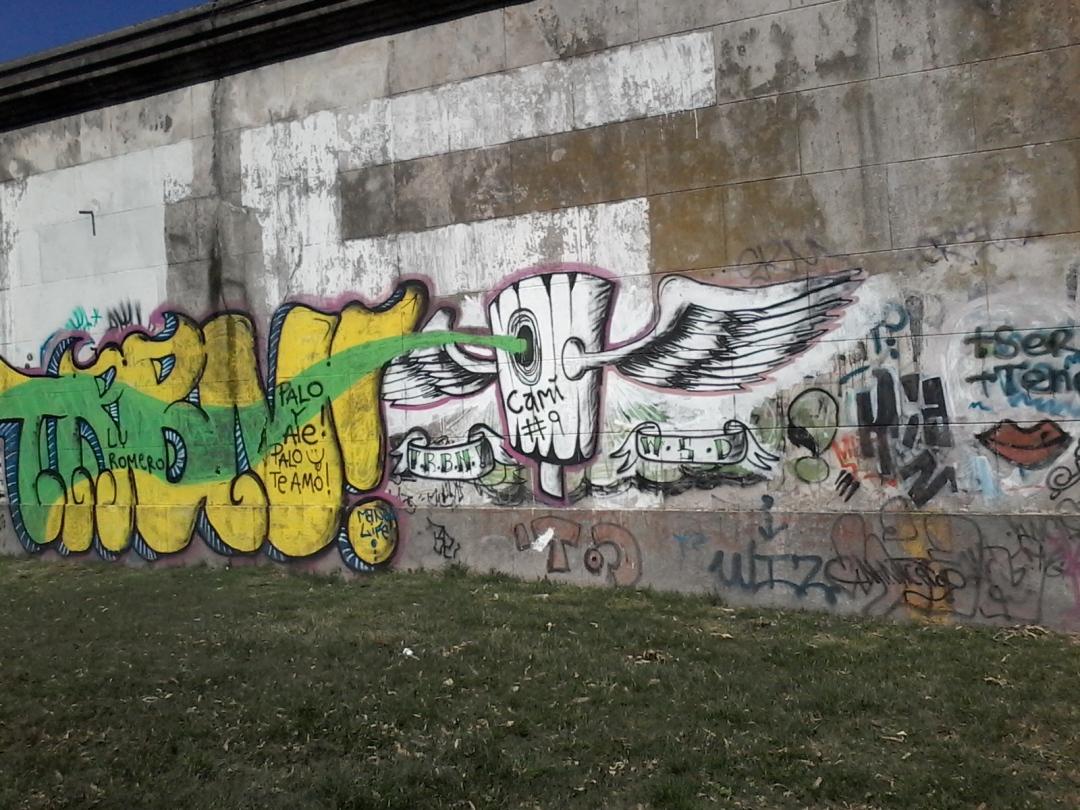 Muro de la calle Bvr. Batlle y Ordóñez (Propios) IV