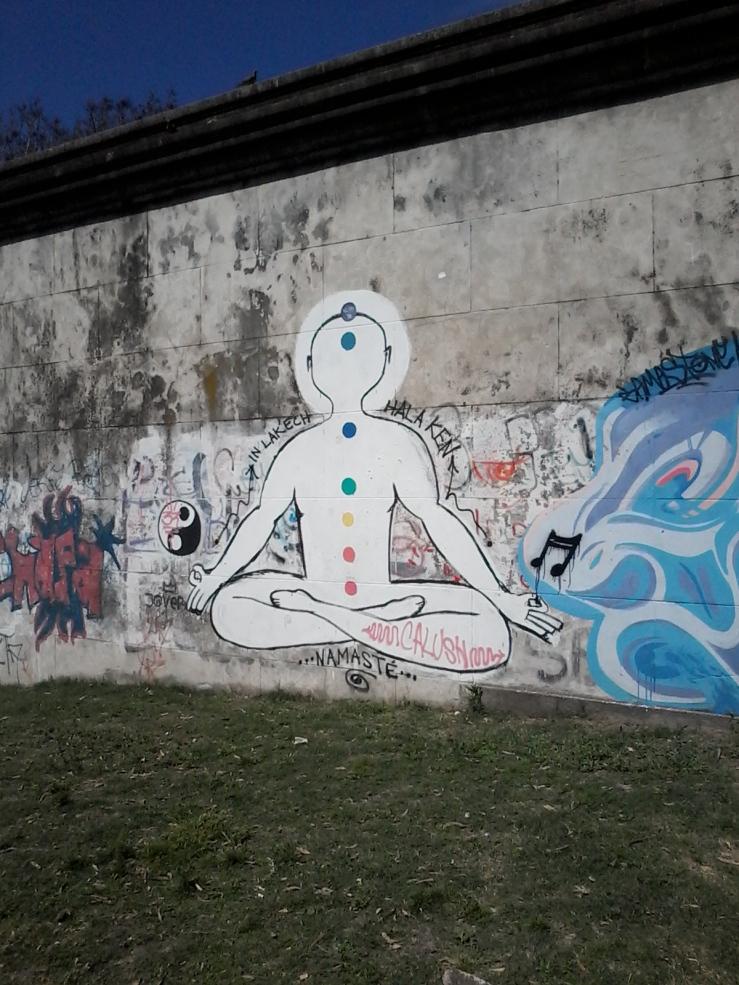Muro de la calle Bvr. Batlle y Ordóñez (Propios) V